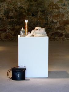 <b>Composition 1</b>, objets, 35x40x35 cm, 2010
