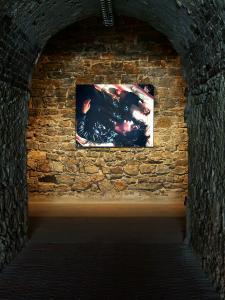 <b>La grenade</b>, vue de l'exposition, Fort Napoléon, Galerie La Tête d'Obsidienne, La Seyne-sur-Mer, 2010