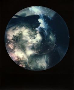 <b>Brutales curiosa</b>, polaroid couleur, 10,8x8,9 cm, exemplaire unique, 2015-2016